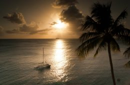 Blick aufs Meer auf Barbados