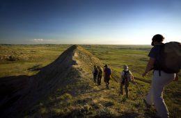 Wanderer in Saskatchewan