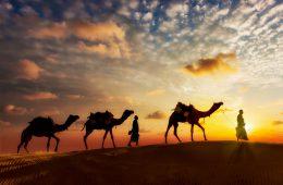 Früher waren die Ababda-Beduinen in Ägypten Karawanenführer.