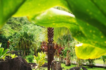 Was ist eigentlich Polynesien?