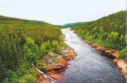 Fluss in Neufundland-Labrador