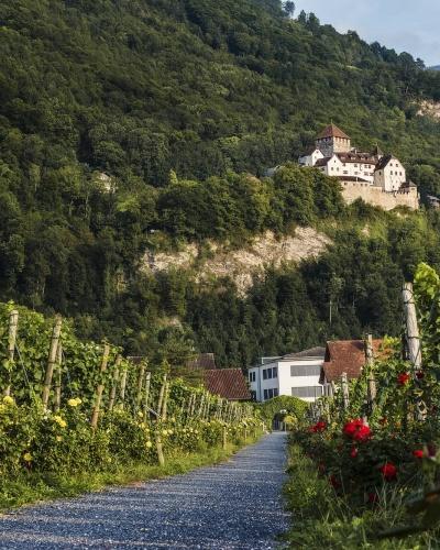 Schloss Vaduz zwischen Weinbergen